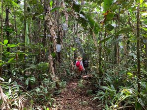 5 Day Authentic Paumari Jungle Trekking, Dolphin Watching, and Wildlife Tour in Amazonas, Colombia