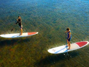 5 Day Refreshing and Invigorating SUP Surf Camp in Brisbane, Queensland