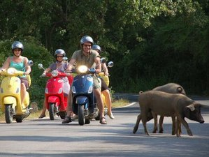 6 Day Self-Guided Motorcycle Tour in Piedmont, Italy