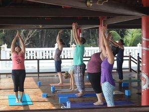 6 Tage Yoga und Achtsamkeits Urlaub in Vietnam