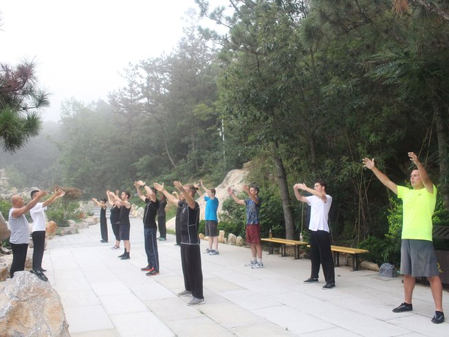 9 Months Train Shaolin & Meihua Quan with Meihua Poles in Mountains, China
