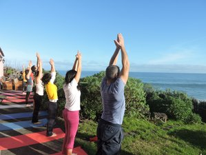 8 Days Tai Chi and Yoga Retreat in Santa Maria da Feira, Portugal