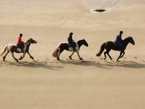 3 Day Beach Horse Riding Holiday for Experienced Riders in Pembrokeshire, Wales