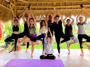 """6 Day """"Accept & Love Yourself 100%""""Healing Guided Meditation, Yoga & Emotional Detox Retreat in Bali"""