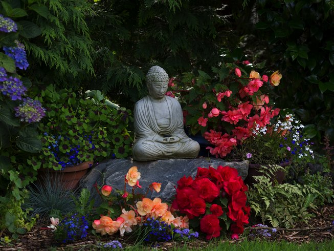 3-Daagse Yoga Retraite in Ierland