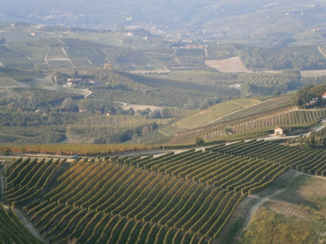 6 Days Wine Tasting Holidays in Italy