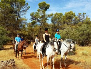 7 Day Extraordinary Horse Riding Holiday in Malaga, Andalucia