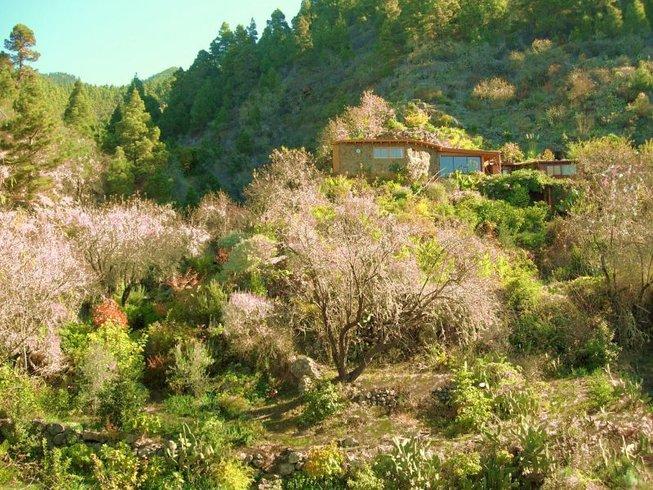 8 Tage Intensive Reinigung und Detox mit Rohkost und Yoga in der Oase Vidyamor auf La Palma