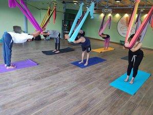 6 Day 50-Hour Aerial Yoga Teacher Training in Rishikesh