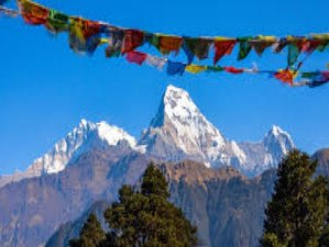 11 Day Annapurna Trekking Tour and Chitwan Wildlife Safari in Nepal