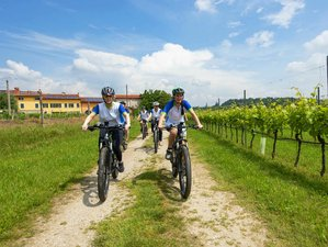 4 Days Bike Gold Cycling Holiday in Province of Verona, Italy