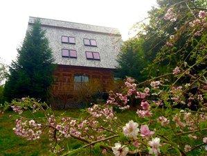 3 Day Weekend Sat Manava Hatha Yoga Retreat in Maine, USA