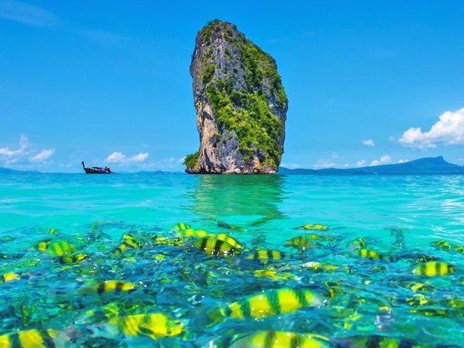 14 días 100 horas de profesorado de yoga: Vinyasa creativo y series básicas en Phuket, Tailandia