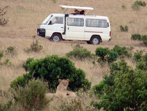 2 Days Tsavo East National Park Safari in Kenya