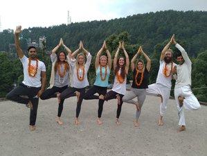 13 Day 100-Hour Meditation, Pranayama, and Yoga Teacher Training Courses in Dharamshala