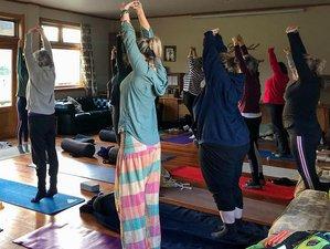 5 Day Yoga and Wellness Retreat in Coromandel