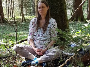4 Day Shinrin Yoku, Forest Therapy, and Mindfulness Meditation Retreat in Weyarn, Germany