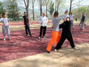 3 Months traditional Shaolin Kung Fu in Song mountain of Original Shaolin temple with Monks