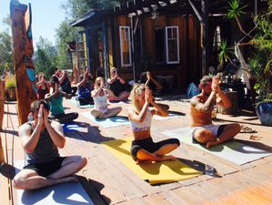 4 Days Cuyama Valley Yoga Retreat in California
