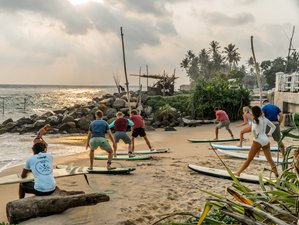 11 Day Beginner and Intermediate Surf Camp in Ahangama, Galle