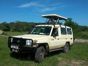 11 Days Safari in Uganda