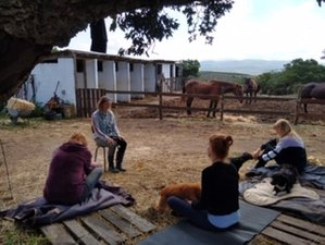 6 Days Meditation, Yoga, and Horseback Riding Holiday near Aljezur