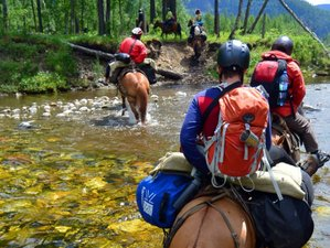 13 Day One-of-a-Kind Horse Riding Tour in Siberia, Russia