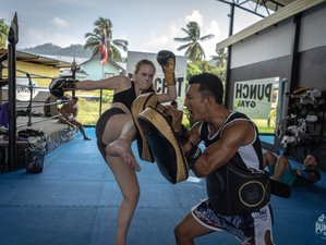 15 Day Amazing Muay Thai Camp in Koh Samui