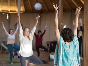 7 Day Yoga, Wine, Cuisine, and Italian Culture Holiday in Tuscany