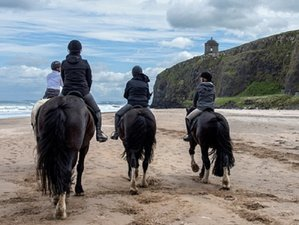 4 Days Iconic Coastal Ride to the Giants Causeway in Country Antrim, Northern Ireland