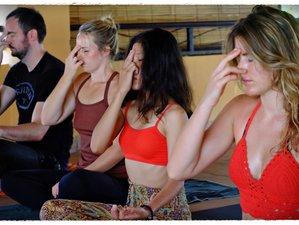 4-Daagse Meditatie en Yoga Retraite op Bali, Indonesië
