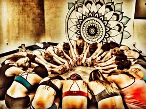 15 Day 200-Hour VIP Immersion Yoga Teacher Training in California