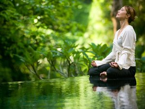 8 Days Ashtanga Yoga and Ayurveda Retreat in India
