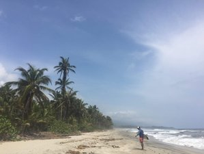 5 Days Surfari Surf Camp in Colombia