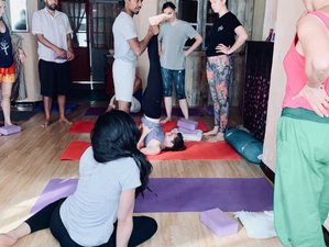 28 Days 200 Hours Hatha Yoga Teacher Training in Provence, France