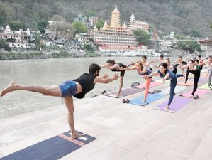 29 Day 200-Hour Fusion Yoga Teacher Training in Rishikesh