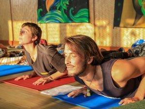 26 Day 200-Hour Online Yoga Teacher Training Course