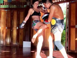 15-Daagse Zen Fit Burn Yoga Vakantie in Koh Samui, Thailand
