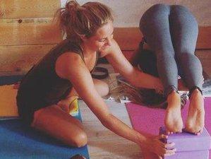 28 jours-200h en formation de professeur de yoga sur la Côte d'Azur, France
