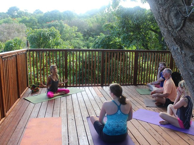 7 Days Jungle Meditation and Yoga Retreat in Hawaii