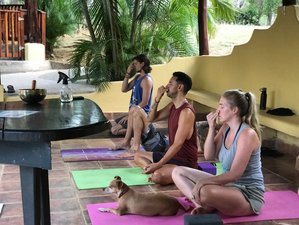 7 Day Yoga and Ayurveda Health Coach Training in Varaždin near the Drava River