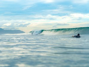 11 Days Guided Surf Camp in Santa Teresa, Costa Rica
