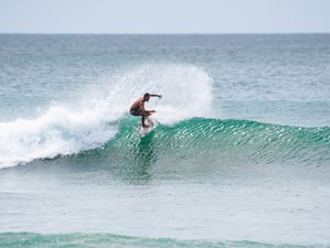 8 Days Guided Surf Camp Tamarindo, Costa Rica