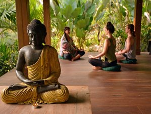 8 Days Ultimate Meditation and Yoga Retreat in Ubud, Bali