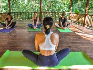 4 Day Serenity of Khao Sok Jungle Yoga Retreat in Surat Thani