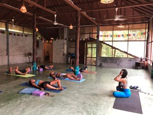 23 Days 200 Hours Hatha Vinyasa Yoga Teacher Training in Koh Phangan, Thailand