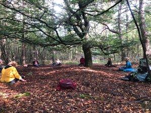 3-Daags Stilte Retreat 'Adem de Wildernis' Yoga en Meditatie in de Bossen bij de Belgische Ardennen