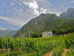 8 Days Yoga Holiday on a Beautiful Estate near the Garda Lake in Italy