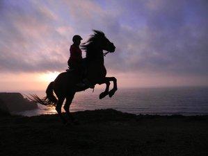 8 Days Horse Freedom Retreat in Zambujeira de Baixo, Portugal