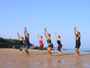 4 Day Transformative Jungle Yoga Retreat with Yoga Philosophy in Agonda, Goa